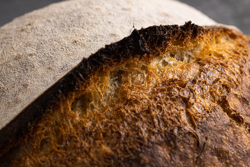 high hydration sourdough bread recipe - the gorgeous crust