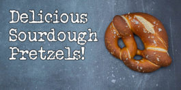 Sourdough Pretzels recipe
