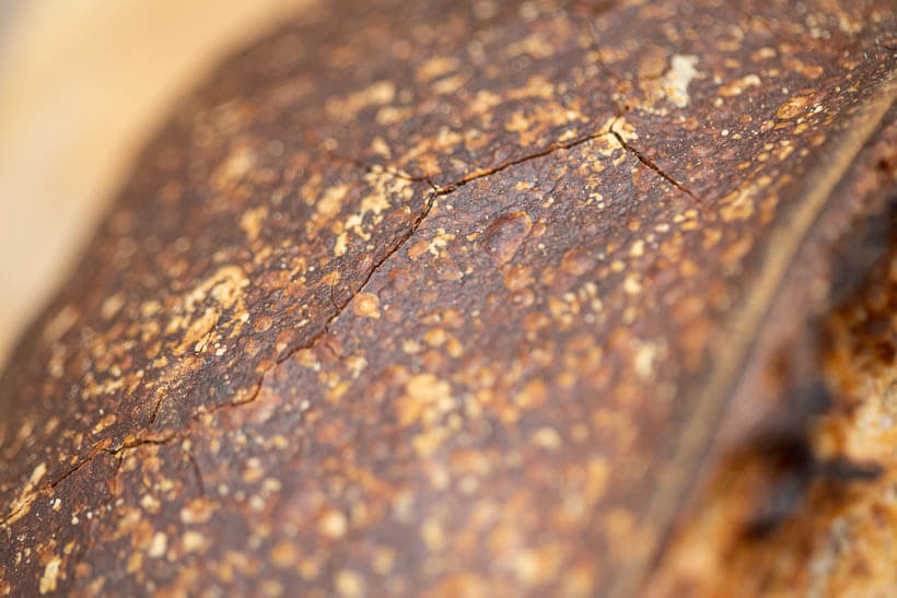 The cracked crust of a no knead sourdough bread