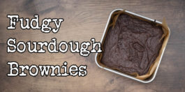 Sourdough Brownies recipe - super easy fudgy brownies with discard